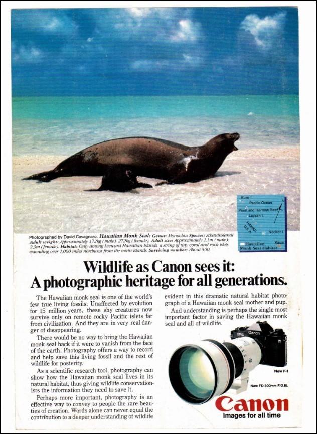 camera-poster-08